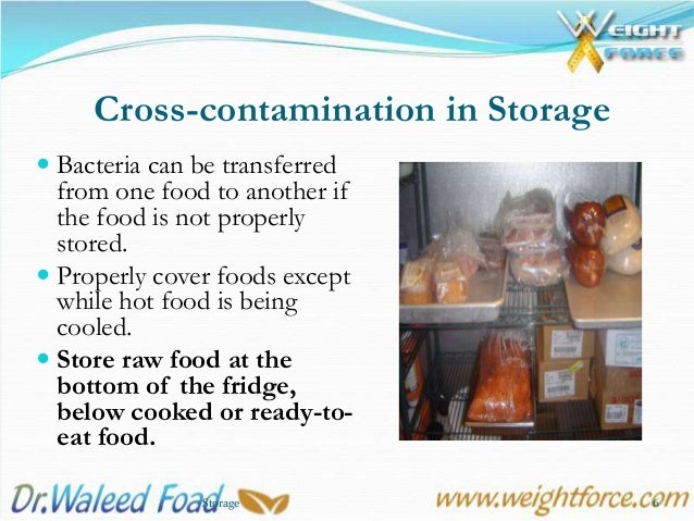 7 Food Storage Overview