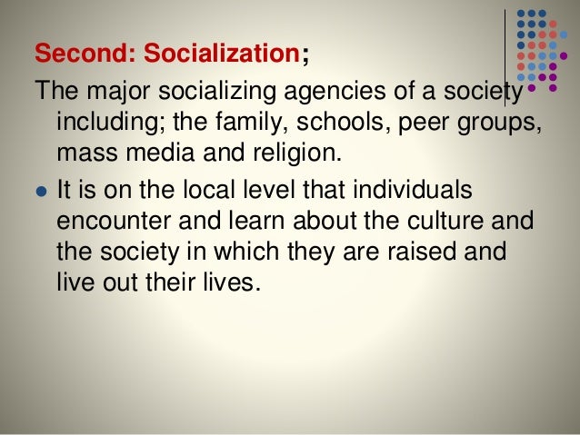 what do you learn in sociology 101