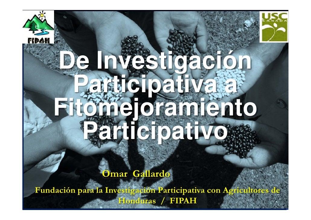 De Investigación       Participativa a     Fitomejoramiento        Participativo                  Omar Gallardo Fundación ...
