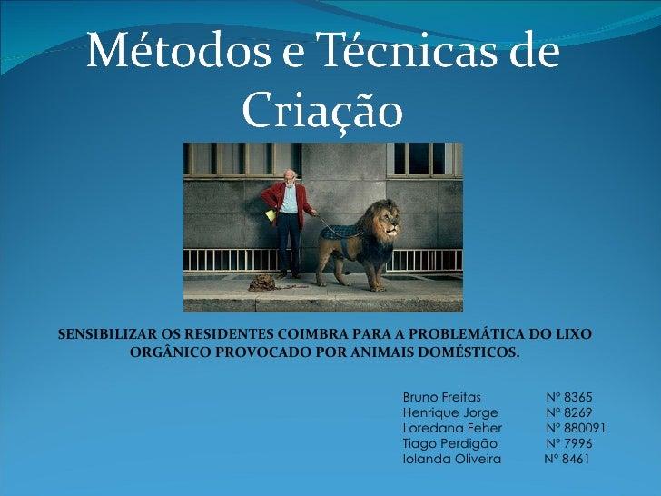 Bruno Freitas Nº 8365 Henrique Jorge Nº 8269 Loredana Feher Nº 880091 Tiago Perdigão Nº 7996 Iolanda Oliveira   Nº 8461...