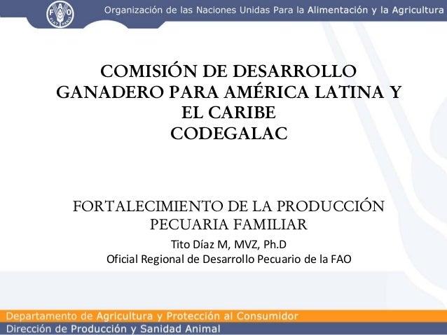 COMISIÓN DE DESARROLLO GANADERO PARA AMÉRICA LATINA Y EL CARIBE CODEGALAC  FORTALECIMIENTO DE LA PRODUCCIÓN PECUARIA FAMIL...
