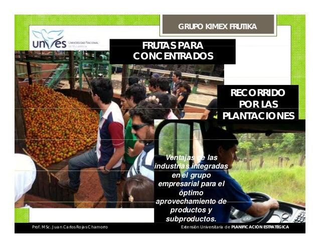 GRUPO KIMEX FRUTIKA  FRUTAS PARA CONCENTRADOS  RECORRIDO POR LAS PLANTACIONES  Ventajas de las industrias integradas en el...