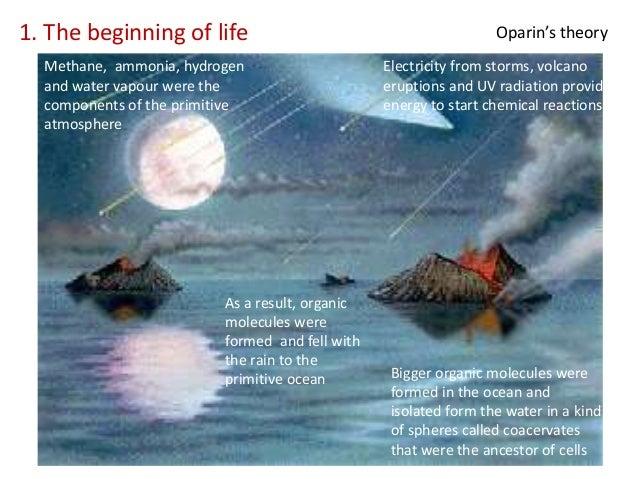 the beginning of life The beginning of life - science jokes clean christian jokes, funny jokes, free jokes, and clean jokes and humor about science, creation, evolution, theories, life.