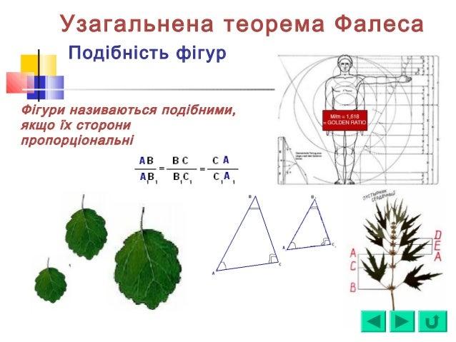 Узагальнена теорема Фалеса Подібність фігур Фігури називаються подібними, якщо їх сторони пропорціональні