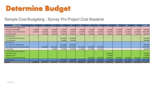 software development project budget template
