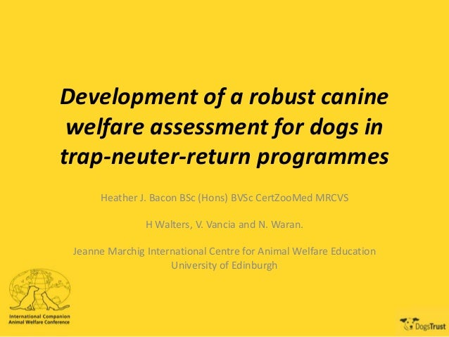 Development of a robust canine welfare assessment for dogs in trap-neuter-return programmes Heather J. Bacon BSc (Hons) BV...