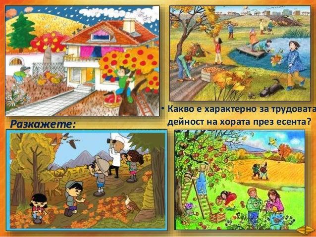 • Хората събират есенната реколтата от овощните и зеленчуковите градини. • Събират гроздето /гроздобер/. • Събират сламата...