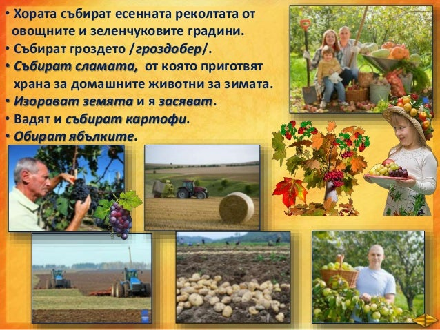  През есента настъпват големи промени в живота на растенията и животните, които се дължат на захлаждането на времето.  П...