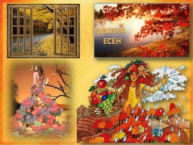 През есента природата е много пъстра и красива.
