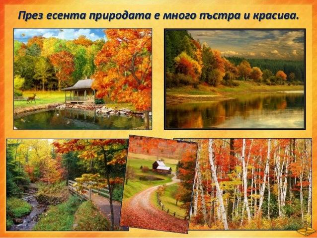 • Времето захлажда. • Често вали дъжд, облачно е, стелят се мъгли. • Листата на дърветата се обагрят и окапват/есенен лист...