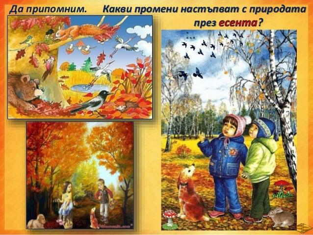 • Някои птици като щъркелите, лястовичките, кълвачът всяка есен отлитат в топлите страни, където има достатъчно храна. Нар...