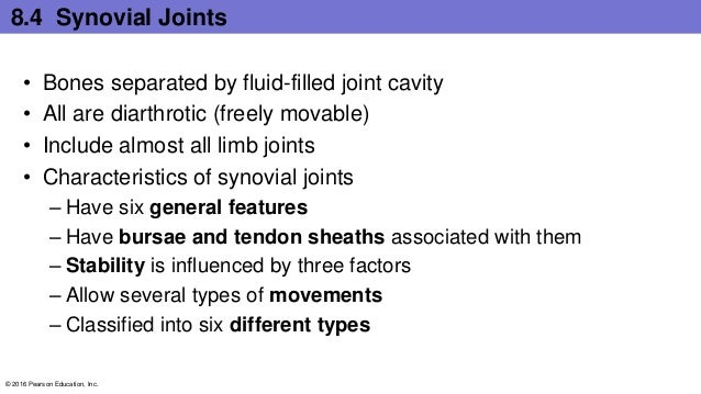 7 characteristics of synovial joints