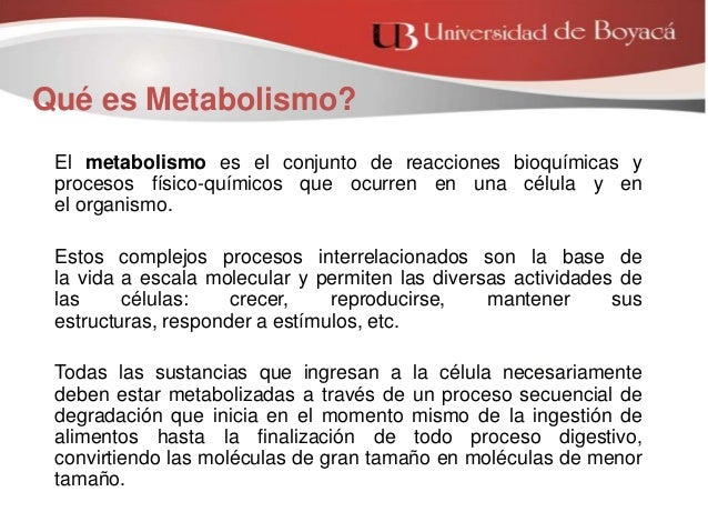 La mejor solución para Programas de pérdida de peso