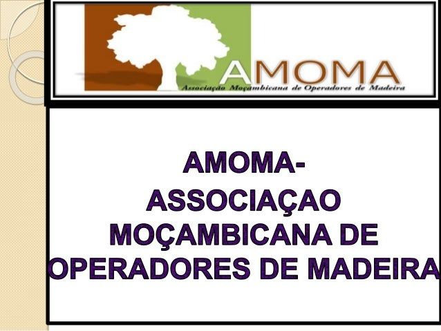 ASSOCIACAO MOCAMBICANA DE OPERADORES DE MADEIRA - AMOMA VISÃO DE SECTOR PRIVADO SOBRE AS MUDANÇAS EM MOÇAMBIQUE, SOBRE O R...