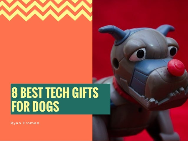 8 BEST TECH GIFTS FOR DOGS Ryan Croman