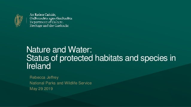 Nature and Water: Status of protected habitats and species in Ireland Rebecca Jeffrey National Parks and Wildlife Service ...