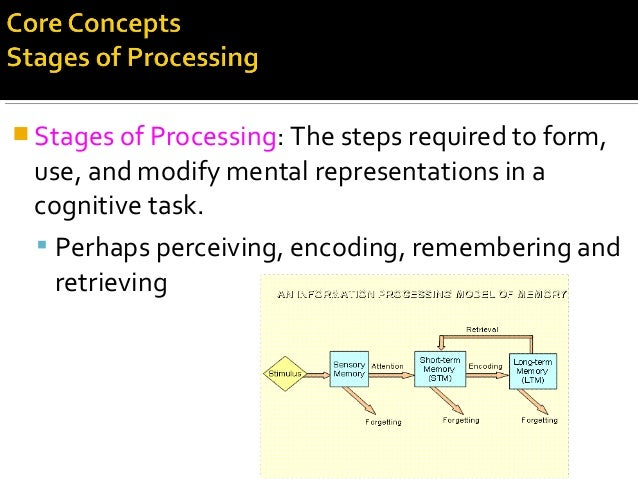  Stages of Processing: The steps required to form, use, and modify mental representations in a cognitive task.  Perhaps ...