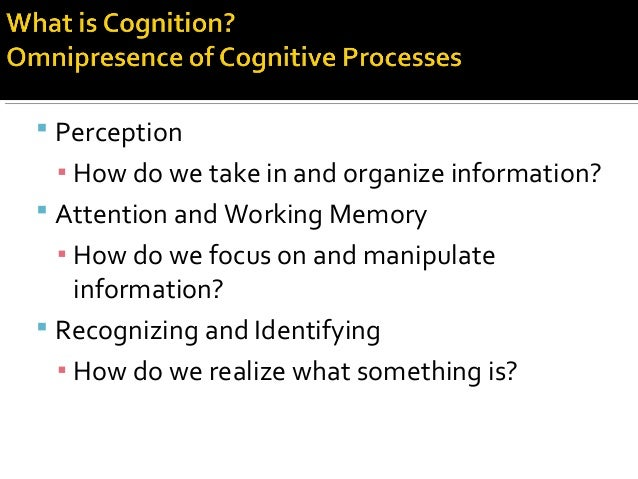  Perception ▪ How do we take in and organize information?  Attention and Working Memory ▪ How do we focus on and manipul...