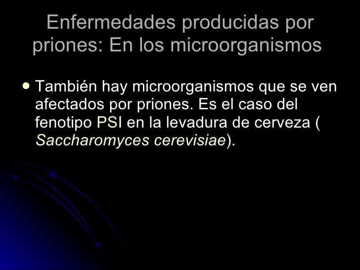 Enfermedades producidas por priones: En los microorganismos  <ul><li>También hay microorganismos que se ven afectados por ...