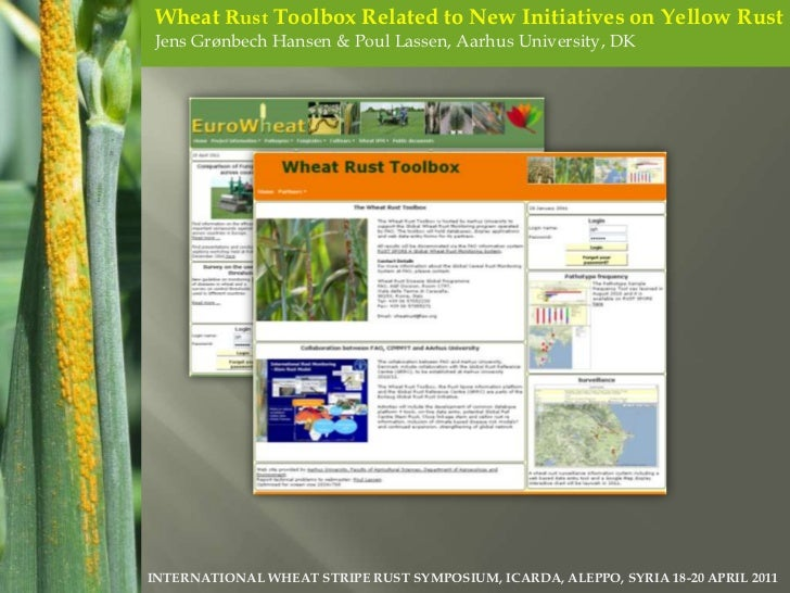 Wheat Rust Toolbox Related to New Initiatives on Yellow Rust<br />Jens Grønbech Hansen & Poul Lassen, Aarhus University, D...