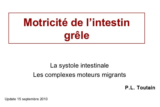 Motricité de l'intestin                  grêle                     La systole intestinale               Les complexes mote...