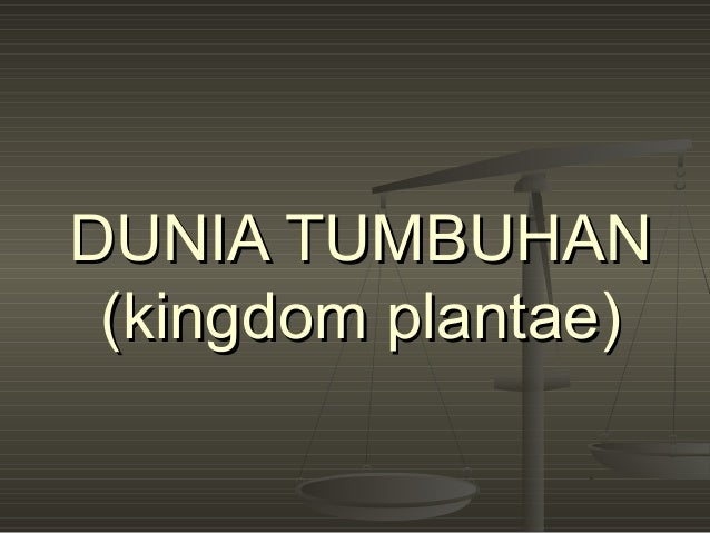 DUNIA TUMBUHAN (kingdom plantae)