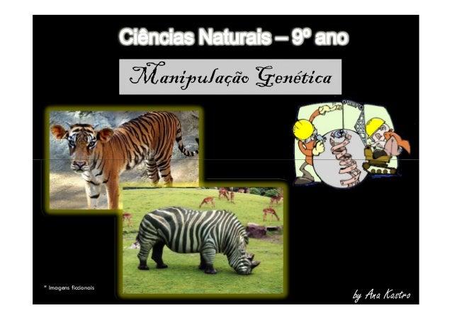 Manipulação Genética by Ana Kastro * Imagens ficcionais
