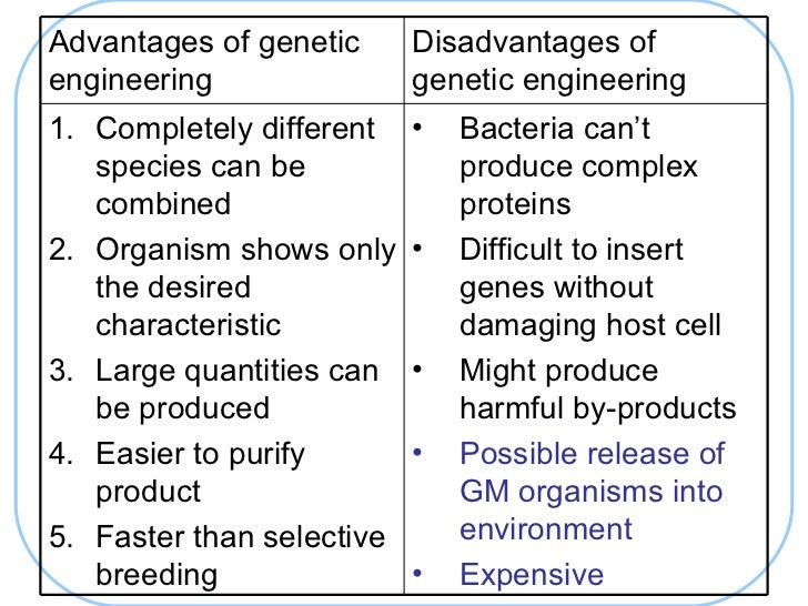 Challenging Evolution: How GMOs Can Influence Genetic Diversity