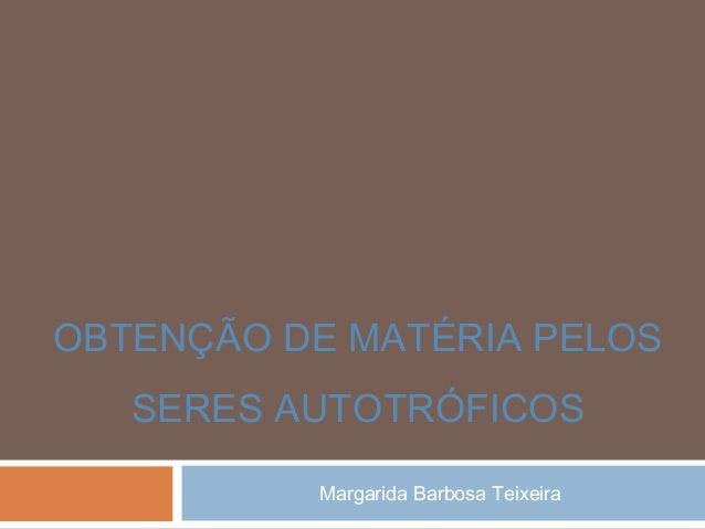 Margarida Barbosa Teixeira OBTENÇÃO DE MATÉRIA PELOS SERES AUTOTRÓFICOS