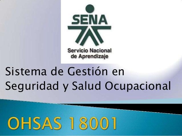 Sistema de Gestión en Seguridad y Salud Ocupacional
