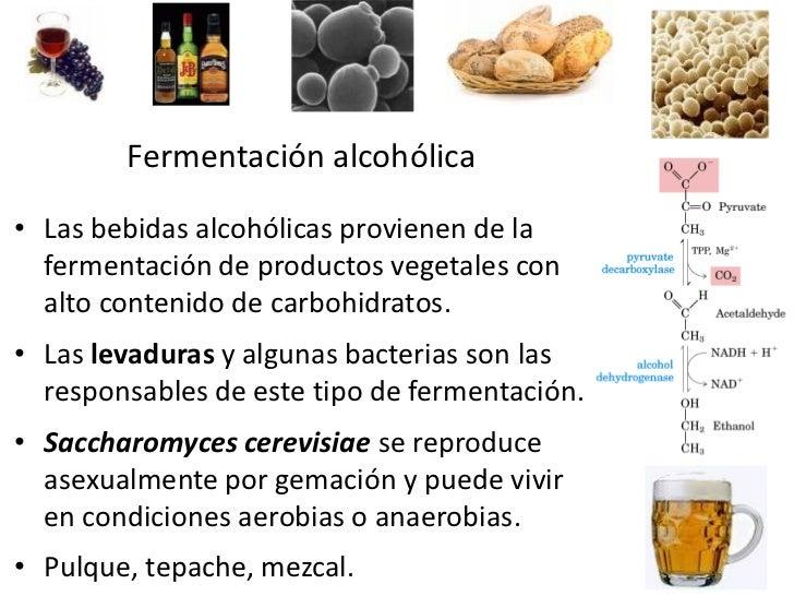 Todas las contraindicaciones a la codificación del alcoholismo