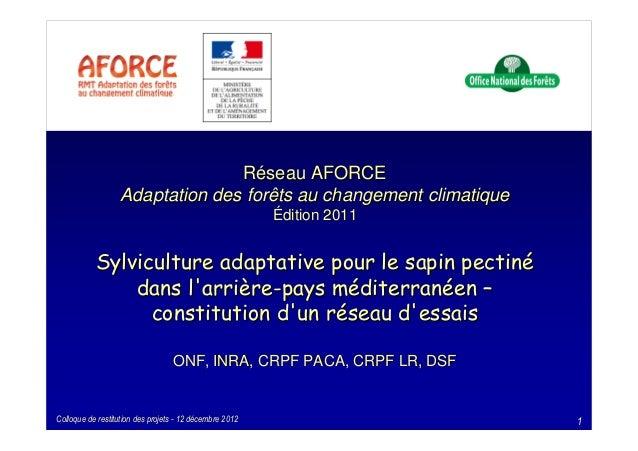 Réseau AFORCE  Adaptation des forêts au changement climatique  Édition 2011  SSyyllvviiccuullttuurree aaddaappttaattiivvee...