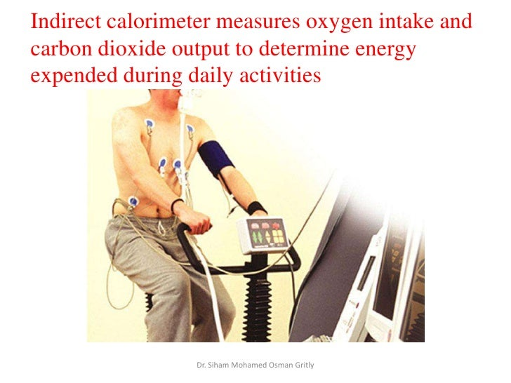 8 measurement of energy expenditure in athletes, Muscles