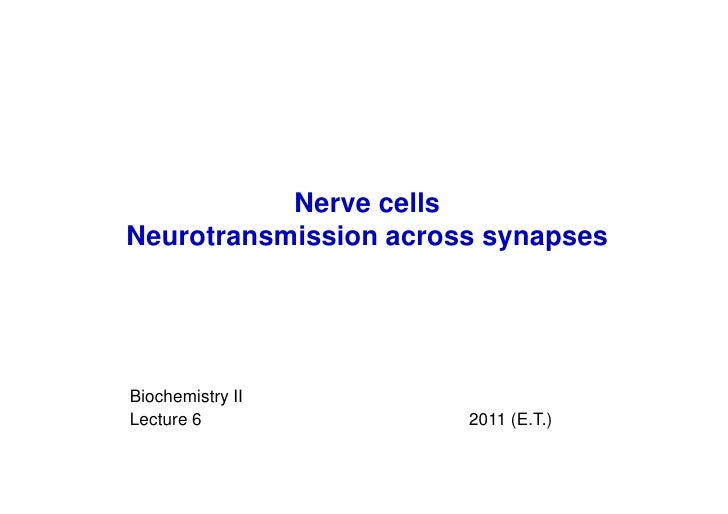 Nerve cellsNeurotransmission across synapsesBiochemistry IILecture 6              2011 (E.T.)