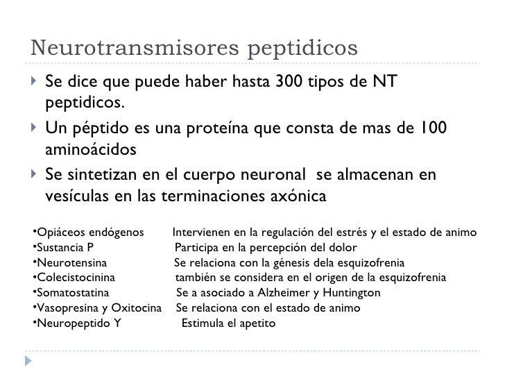 Neurotransmisores peptidicos <ul><li>Se dice que puede haber hasta 300 tipos de NT peptidicos. </li></ul><ul><li>Un péptid...
