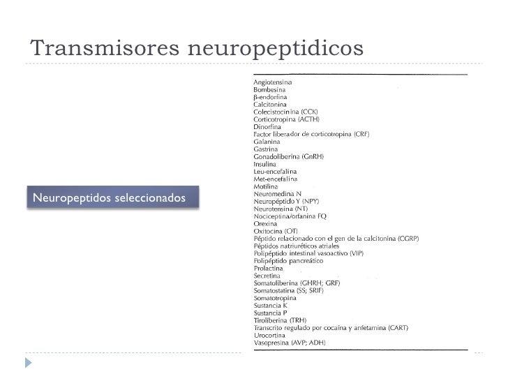 Transmisores neuropeptidicos Neuropeptidos seleccionados