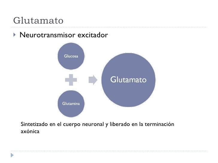 Glutamato <ul><li>Neurotransmisor excitador </li></ul>Sintetizado en el cuerpo neuronal y liberado en la terminación axónica