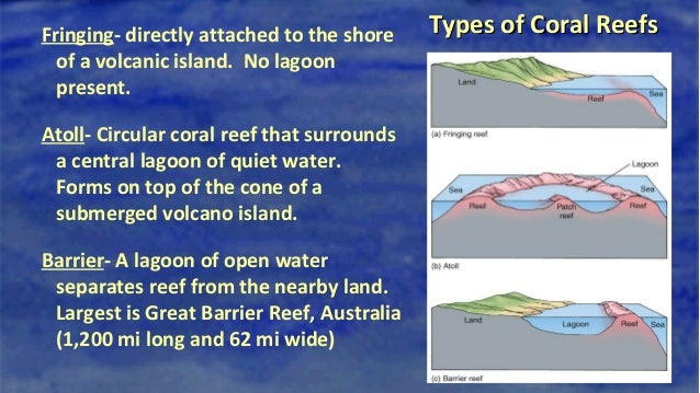 types of reefs diagram types of electrical plans