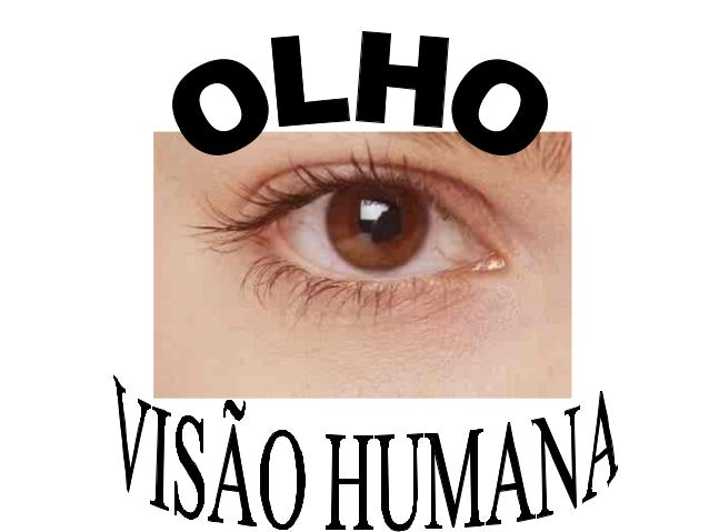 INTRODUÇÃO  Os principais componentes visuais do sistema  visual são: os olhos, o mecanismo encefálico para  interpretação...