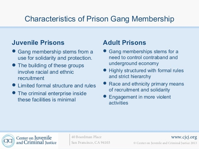 reasons that prison gangs flourish inside the penitentiary The racial order of prisons  the initial reason prison gangs were formed, however, was for protection from the violence and chaos that followed the changes in the.