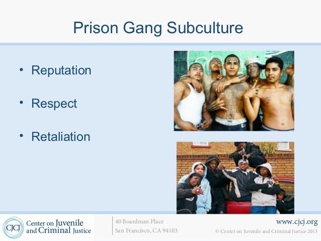 characteristics of gang membership In order to assess the causes for youth gang membership, an analysis of data   characteristics, actual and perceptual neighborhood qualities were included as.
