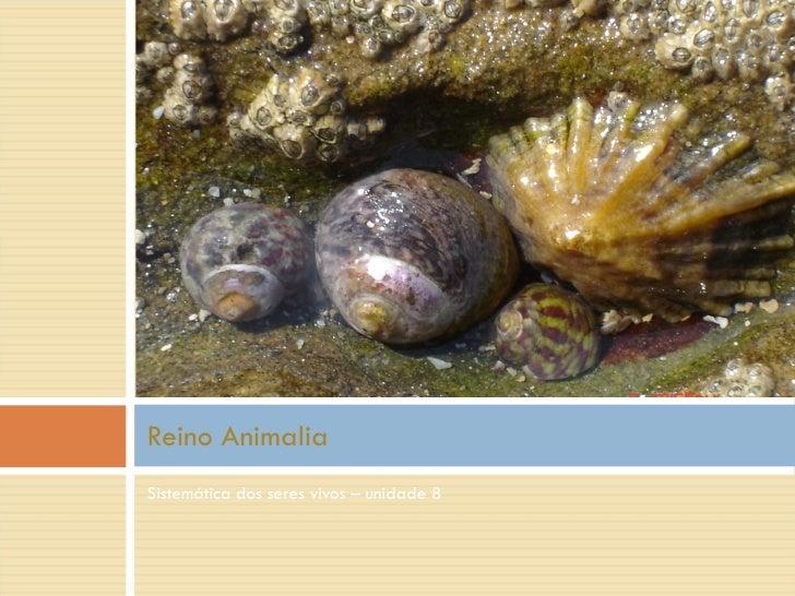 <ul><li>Sistemática dos seres vivos – unidade 8 </li></ul>Reino Animalia