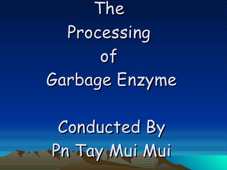 The  Processing  of  Garbage Enzyme Conducted By Pn Tay Mui Mui