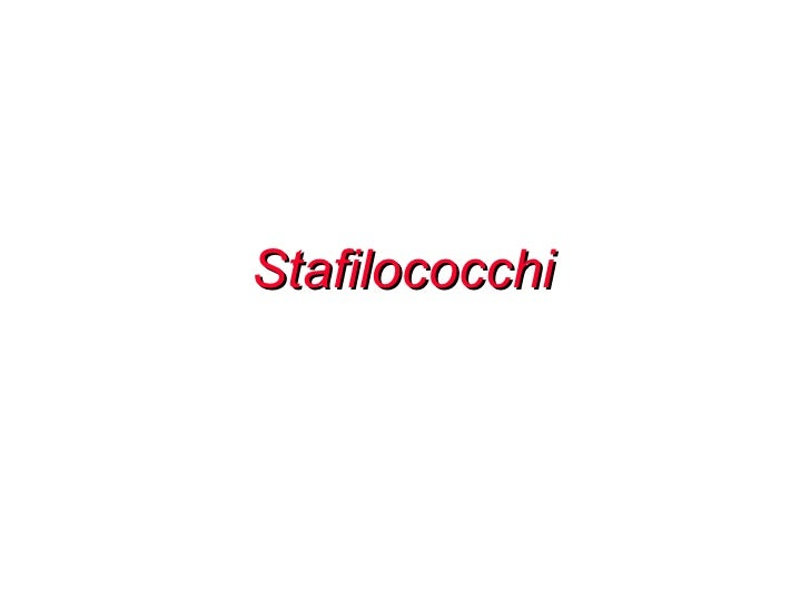 Stafilococchi