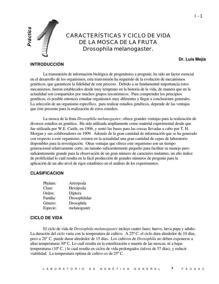 Práctica 1 CARACTERISTICAS Y CICLO DE VIDA DE LA                                                                          ...