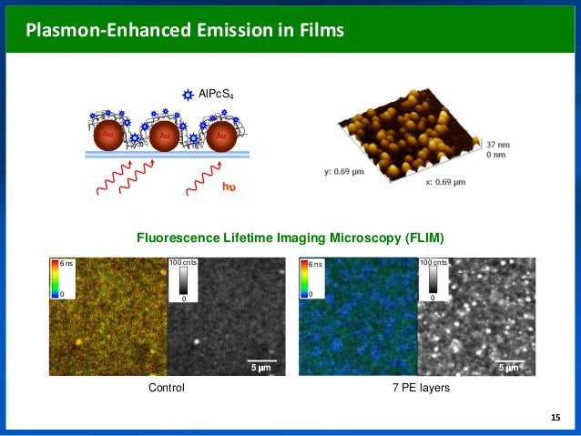 dye sensitized solar cell phd thesis This thesis studies the application of copper(i) complexes as the sensitizing component of dye sensitized solar cells (dscs) ruthenium(ii) polypyridyl complexes have been widely studied and shown great success for the past two decades however the metal is rare and expensive.
