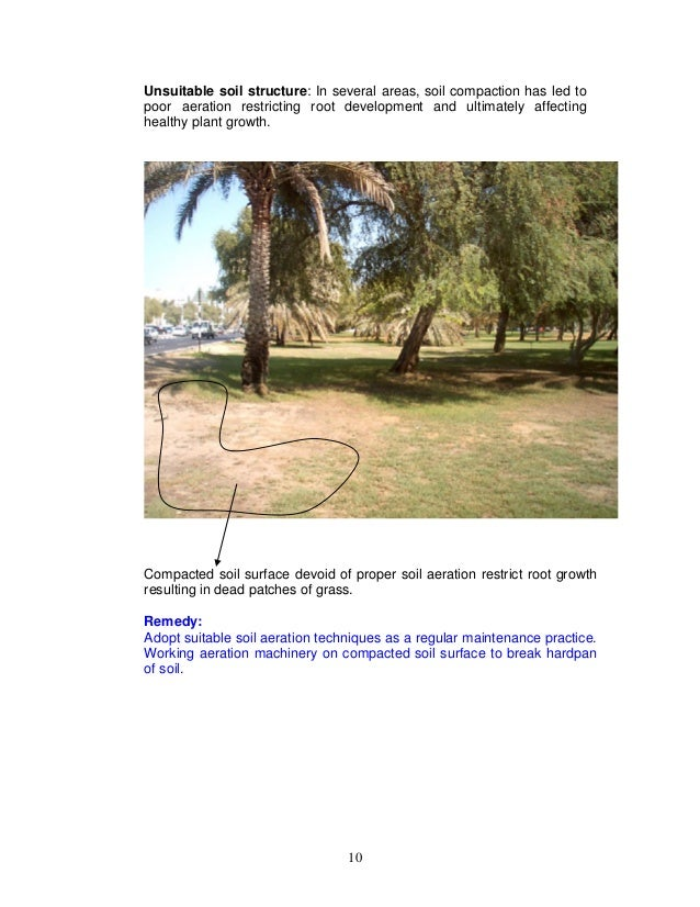 Major Landscape & Irrigation issues in AD Island - 2005