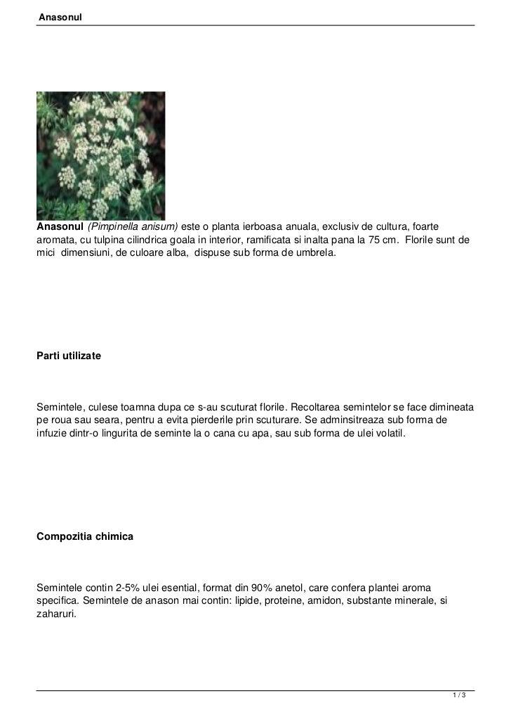 AnasonulAnasonul (Pimpinella anisum) este o planta ierboasa anuala, exclusiv de cultura, foartearomata, cu tulpina cilindr...