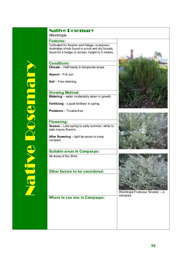 drought tolerant  waterwise plants manual