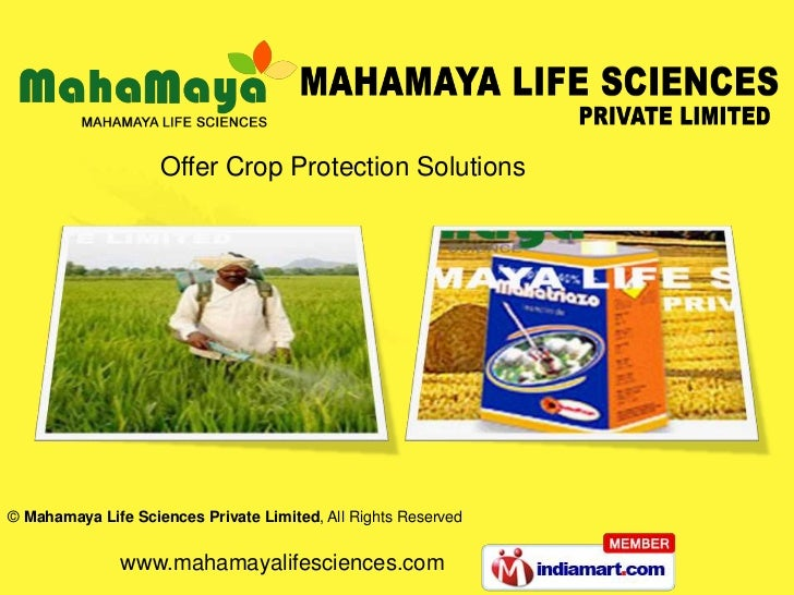 Offer Crop Protection Solutions© Mahamaya Life Sciences Private Limited, All Rights Reserved               www.mahamayalif...